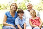 Grandparents And Grandchildren Enjoying Day In Park — Stock Photo