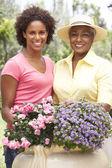 Kadın kıdemli yetişkin kızıyla birlikte bahçe — Stok fotoğraf