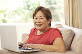 Senior Woman Using Laptop At Home — Stok fotoğraf