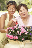Mother With Adult Daughter Gardening Together — Stok fotoğraf