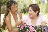 Mother With Adult Daughter Gardening Together — Stockfoto