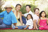Extended Family Group Relaxing In Garden — Stock Photo