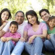 Portrait Of Extended Family Group In Park — Stock Photo #4822319