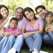 Portrait Of Extended Family Group In Park — Stock Photo #4822322