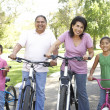 Foto Stock: Grandparents In Park With Grandchildren Riding Bikes