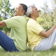 Portrait Of Senior Couple In Park — Stock Photo #4822606