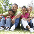 Grandparents In Park With Grandchildren - Stock Photo