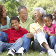 Portrait Of Extended Family Group In Park — Stockfoto