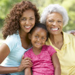 Grandmother With Daughter And Granddaughter In Park - Stock Photo