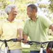 Royalty-Free Stock Photo: Senior Couple Riding Bikes In Park