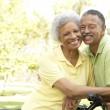Senior Couple Riding Bikes In Park — Stock Photo #4822687