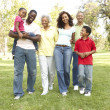 Portrait of Happy Family In Park — Stock Photo #4822691