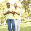 Senior Couple Walking In Park — Stock Photo #4822698