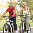 Senior Couple Riding Bikes In Park — Stock Photo #4822723