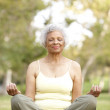 Senior Woman Doing Yoga In Park — Stock Photo