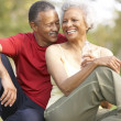 Senior Couple Resting After Exercise — Stock Photo #4822742