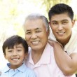 Stock Photo: Grandfather With Son And Grandson In Park