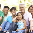 Portrait Of Extended Family Group In Park — Stock Photo #4822853
