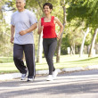 Senior Couple Jogging In Park — Stock Photo #4822881