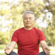 Senior Man Doing Yoga In Park - Stock Photo