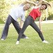 Senior Couple Exercising In Park — Stock Photo #4822907
