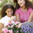 Mother And Daughter Gardening Together — Stok fotoğraf