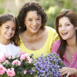 Stock Photo: Senior WomWith Adult Daughter And Granddaughter Gardening Tog