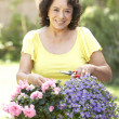Senior Woman Gardening — Stock Photo #4822968