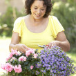 Senior Woman Gardening — Stock Photo #4822969