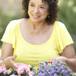 Senior Woman Gardening — Stock Photo #4822970