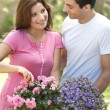 Stock Photo: Young Couple Gardening
