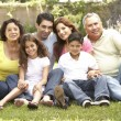 Portrait Of Extended Family Group In Park — Stock Photo #4822980