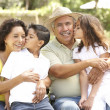 Portrait Of Grandparents With Grandchildren In Park — Stock Photo