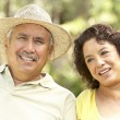 Senior Couple Relaxing In Garden Together — Stock Photo #4822993
