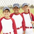 Stock Photo: Young Boys In Baseball Team