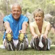 Senior Couple Exercising In Park - Stok fotoğraf