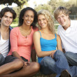 Group Of Teenagers Sitting In Playground — Stock Photo #4823426