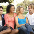 Group Of Teenagers Sitting In Playground — Stock Photo #4823427