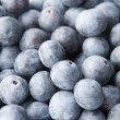 Blueberries — Stock Photo #4823438