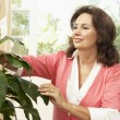 Senior Woman At Home Looking After Houseplant — Stock Photo