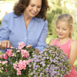 Grandmother With Granddaughter Gardening Together — Stock Photo #4823893