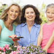 Senior Woman With Adult Daughter And Granddaughter Gardening Tog - Stock Photo