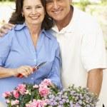Senior Couple Gardening Together — Stock Photo
