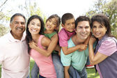 Extended Family Group In Park — Stock Photo