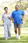 Couple de personnes âgées jogging dans le parc — Photo