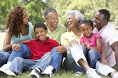 Portrait Of Extended Family Group In Park — Stock Photo
