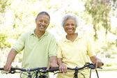 Senior Couple Riding Bikes In Park — Stock Photo