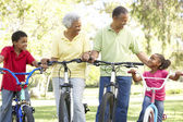 Grandparents In Park With Grandchildren Riding Bikes — Stock Photo