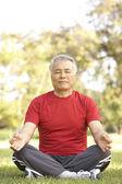 Senior Man Doing Yoga In Park — Stock Photo