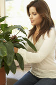 Woman At Home Looking After Houseplant — Stockfoto